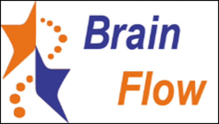 Brain Flow (NRP-Projekt von 2010 bis 2014)