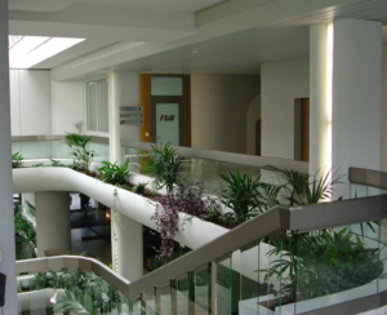 Forschungszentrum Nanomedizin (NRP-Projekt von 2007 bis 2011)