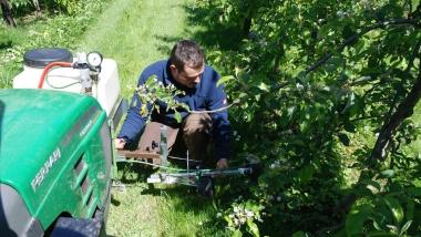 Nachhaltige Strategien zur Unkrautbekämpfung im Obstbau