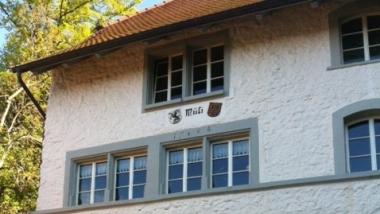 Businessplan Betriebskonzept Mühle Geuensee