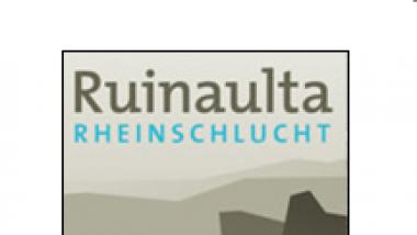 Progetto Ruinaulta (Progetto NPR da 2008 a 2009)